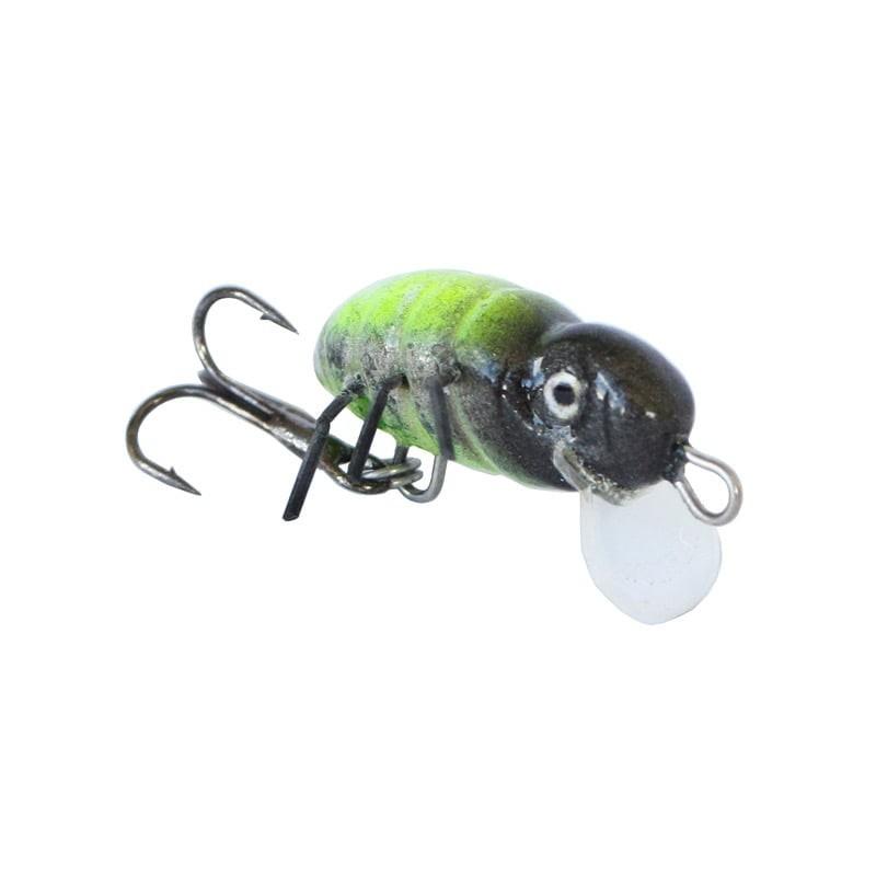 leurre insecte Osa